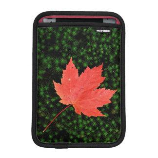 USA, Missouri, Mark Twain National Forest iPad Mini Sleeves