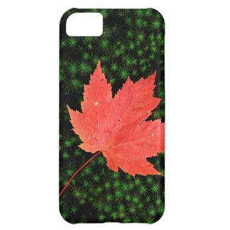 USA, Missouri, Mark Twain National Forest iPhone 5C Case
