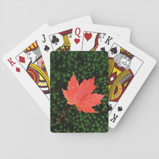 USA, Missouri, Mark Twain National Forest Playing Cards