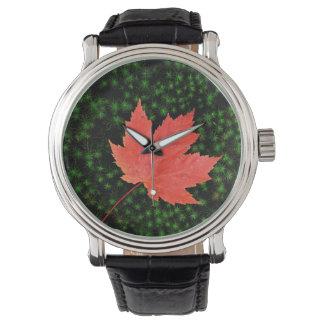 USA, Missouri, Mark Twain National Forest Wrist Watches