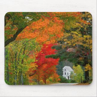 USA, New England, New Hampshire, Andover Mouse Pad
