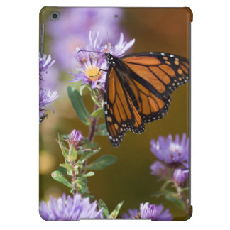 USA, New Hampshire. Monarch butterfly on aster iPad Air Case