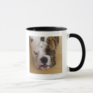 USA, New Jersey, Jersey City, Portrait of bored Mug