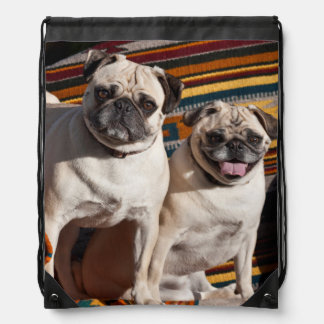 USA, New Mexico. Two Pugs Together Drawstring Backpack