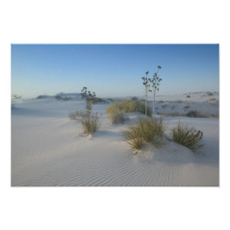 USA New Mexico White Sands National 2 Posters