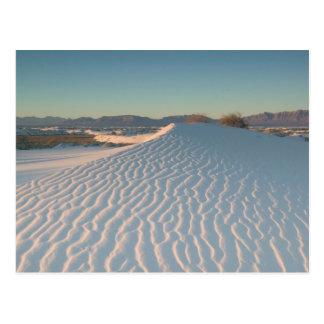 USA, New Mexico, White Sands National Postcard
