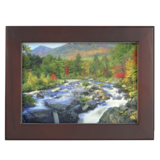 USA, New York. A waterfall in the Adirondack Memory Boxes