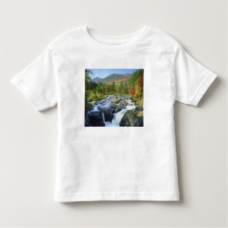 USA, New York. A waterfall in the Adirondack Toddler T-Shirt