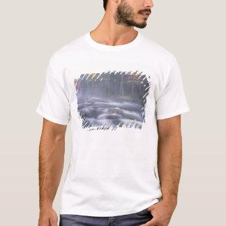 USA, New York, Adirondacks, Big Moose River T-Shirt