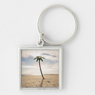 USA, New York City, Coney Island, palm tree on Keychain