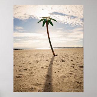 USA, New York City, Coney Island, palm tree on Poster