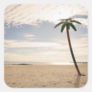 USA, New York City, Coney Island, palm tree on Sticker