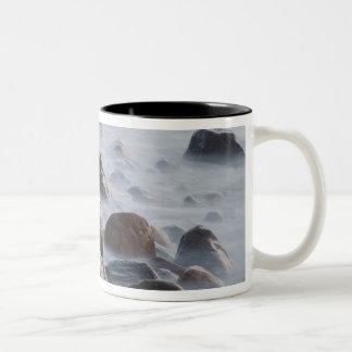 USA, New York, East Hampton. Ocean surf at Two-Tone Mug
