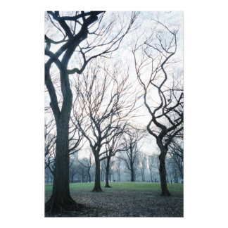 USA, New York, New York City: Central Park Photo Print
