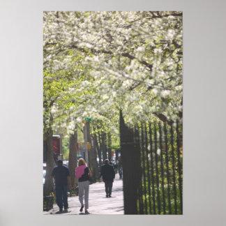 USA, New York, New York City, Manhattan: 8 Poster