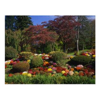 USA, New York, Saugerties, Seamon Park. Autumn Postcard