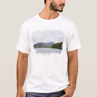 USA, New York State, Adirondack Mountains, Lake 4 T-Shirt