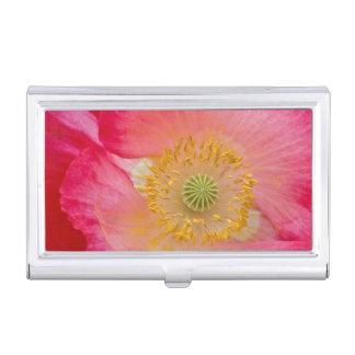 USA, North Carolina. Close-up of poppy interior Business Card Holders