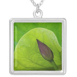 USA; North Carolina; Lotus leaf and bud Square Pendant Necklace