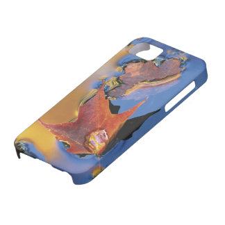 USA, Northeast, Maple Leaf in Reflection iPhone 5 Case
