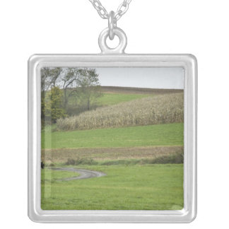 USA, Northeastern Ohio. Amish buggy on farm Square Pendant Necklace