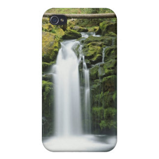 USA, Oregon, Cascade Range, Umpqua National iPhone 4/4S Covers