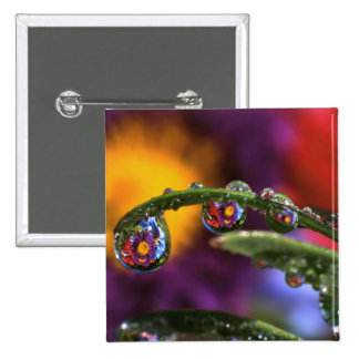 USA, Oregon, Close-up abstract of purple 15 Cm Square Badge
