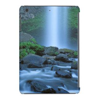 USA, Oregon, Columbia Gorge, Latourell Falls iPad Mini Retina Case
