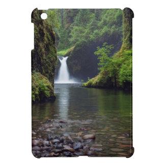USA, Oregon, Columbia River Gorge 5 iPad Mini Cover