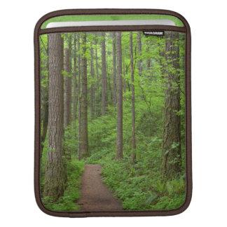 USA, Oregon, Columbia River Gorge. Elowah Falls iPad Sleeves