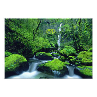 USA, Oregon, Columbia River Gorge National 3 Art Photo
