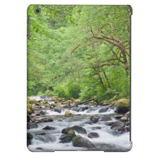 USA, Oregon, Columbia River Gorge, Tanner Creek 4 Case For iPad Air