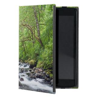 USA, Oregon, Columbia River Gorge, Tanner Creek 4 Case For iPad Mini