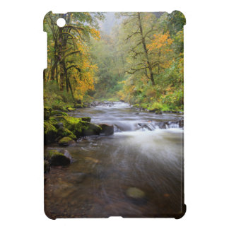 USA, Oregon, Columbia River Gorge, Tanner Creek Cover For The iPad Mini