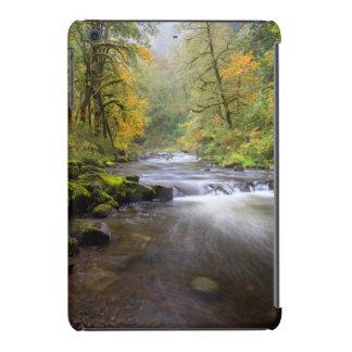 USA, Oregon, Columbia River Gorge, Tanner Creek iPad Mini Covers