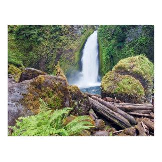 USA, Oregon, Columbia River Gorge, Wahclella Postcard