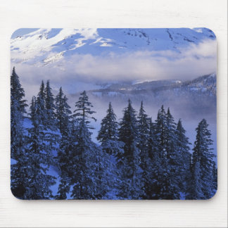 USA, Oregon, Deschutes National Forest, South Mouse Pad