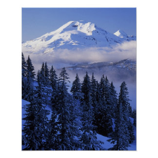 USA, Oregon, Deschutes National Forest, South Poster