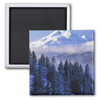 USA, Oregon, Deschutes National Forest, South Square Magnet