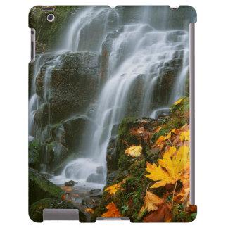 USA, Oregon, Fairy Falls, Columbia River Gorge