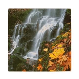 USA, Oregon, Fairy Falls, Columbia River Gorge Maple Wood Coaster