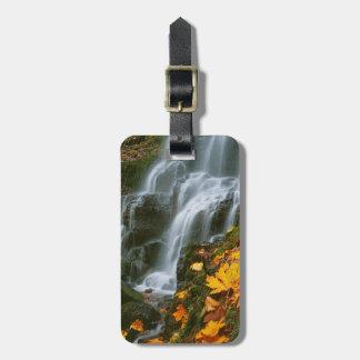 USA, Oregon, Fairy Falls, Columbia River Gorge Travel Bag Tags