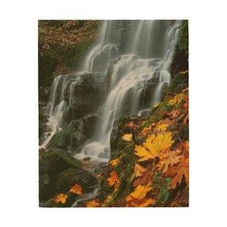 USA, Oregon, Fairy Falls, Columbia River Gorge Wood Canvases