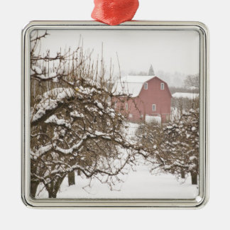 USA, Oregon, Hood River. Snow covered Apple Ornaments