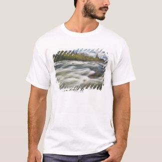 USA, Oregon, Linn County, Crabtree Creek T-Shirt