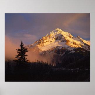 USA, Oregon, Mt. Hood National Forest. Rolling Poster