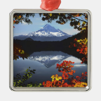 USA, Oregon, Mt. Hood National Forest. Silver-Colored Square Decoration