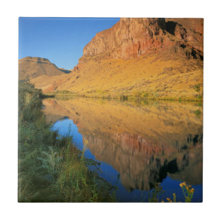 USA, Oregon, Owyhee River Canyon Small Square Tile
