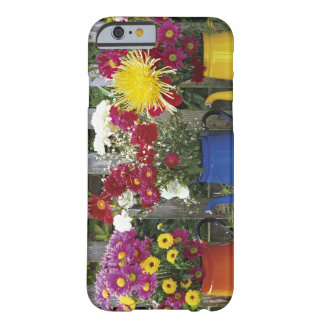 USA, Oregon, Portland. Antique enamelware Barely There iPhone 6 Case
