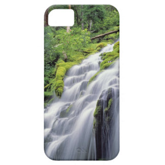 USA, Oregon, Proxy Falls. Proxy Falls rushes iPhone 5 Covers